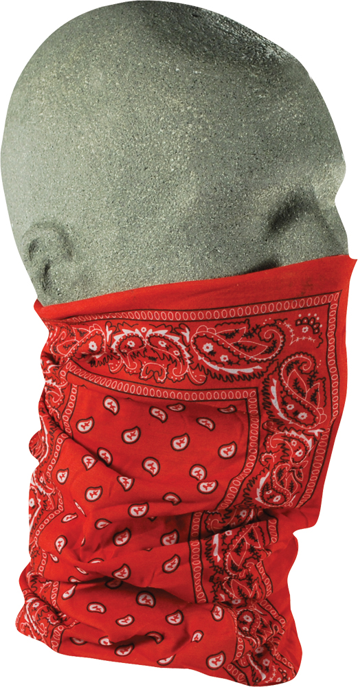 MOTLEY TUBE (RED PAISLEY)