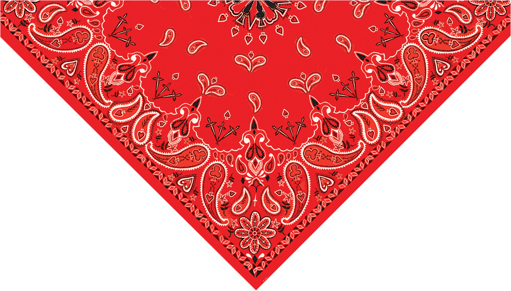 3-IN-1 HEADBAND SYSTEM (PAISLEY RED)